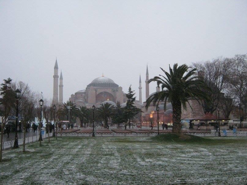 пальмы в снегу стамбул